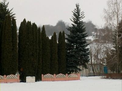 Деревня Мещерка (село Барсуково), Становлянский район