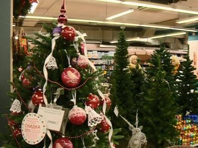 Выбираем елку, а также продукты для новогоднего стола