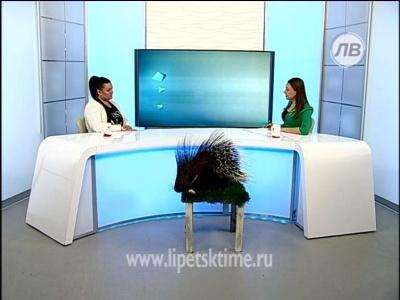 Гость студии - Евгения Грабовская